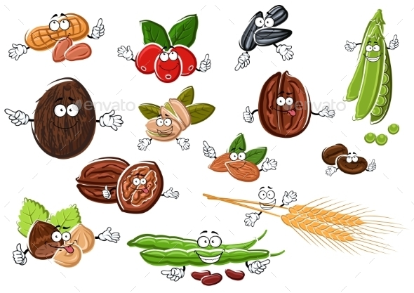 Cartoon Nuts, Beans, Seeds And Wheat - Food Objects