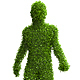 5 Realistic Render Human Forms of Leaves - GraphicRiver Item for Sale