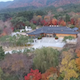 Aerial Shot of Temple Autumn in Korea - VideoHive Item for Sale