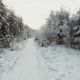 Winter Forest Road - VideoHive Item for Sale