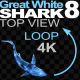 Shark 8 Swims in a Circle - VideoHive Item for Sale