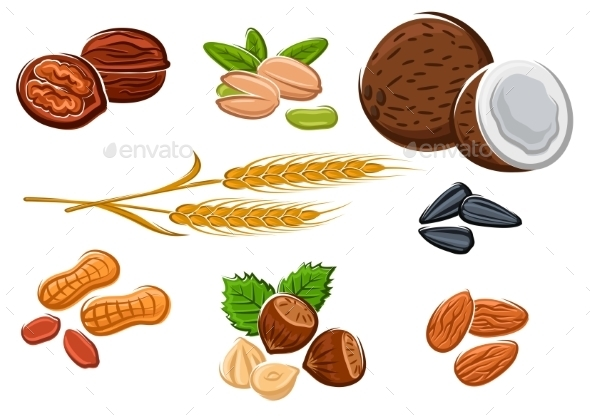 Nuts, Sunflower Seeds And Wheat Ears - Food Objects