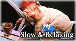 Slow & Relaxing