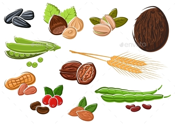 Appetizing Nuts, Beans, Seeds and Wheat - Food Objects