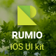 Rumio Flat iOS UI Kit - GraphicRiver Item for Sale