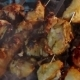 Barbecue Meat Pieces Being Fried On Charcoal Grill - VideoHive Item for Sale