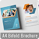 Bifold A4 Business Brochure - GraphicRiver Item for Sale