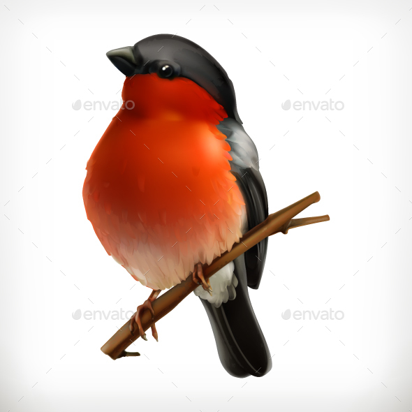 Bullfinch Icon - Animals Characters