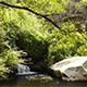 Botswana Waterfall - VideoHive Item for Sale