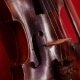 Violin On The Beautiful Red Background - VideoHive Item for Sale