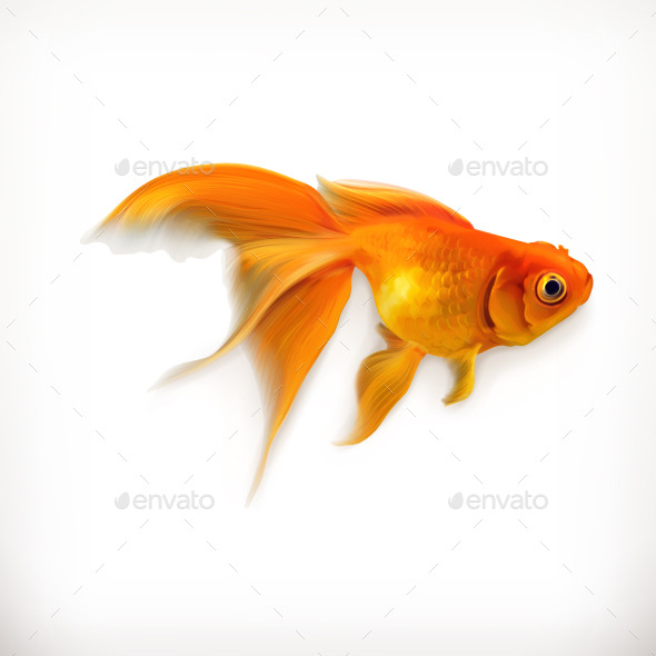 Goldfish Icon - Organic Objects Objects