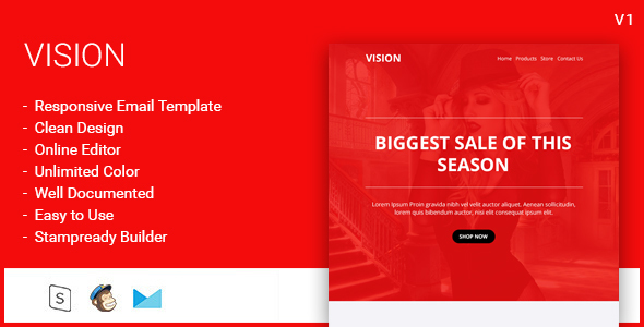 Vision e-Commerce Email Template