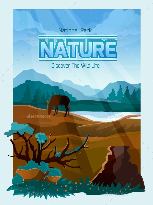 National Park Nature Background Banner  - Nature Conceptual