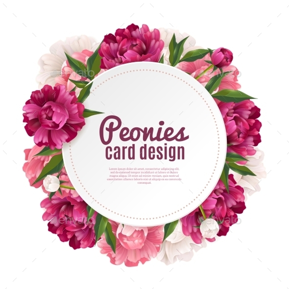 Peony Frame Card Design  - Flowers & Plants Nature