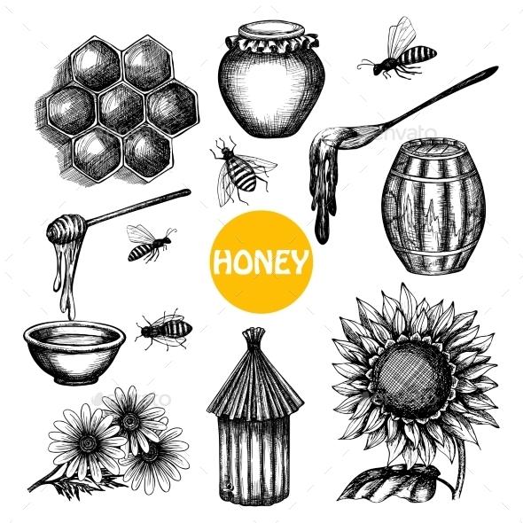 Honey Set Black Hand Drawn Doodle  - Miscellaneous Conceptual