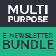 Multi Purpose E-newsletter  Bundle - GraphicRiver Item for Sale