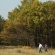 Couple Walking Against Trees - VideoHive Item for Sale