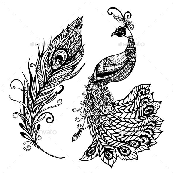 Peacock Feather Design Black Doodle  Print - Decorative Symbols Decorative