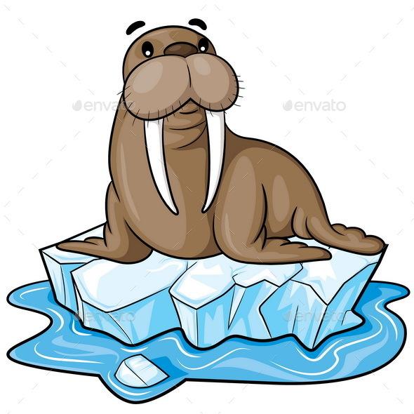 Walrus Cartoon - Animals Characters