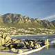 Camps Bay Cape Town South Africa Beach - VideoHive Item for Sale