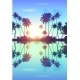 Blue Skypalms Silhouettes With Reflection - GraphicRiver Item for Sale