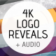 Logo Ident Reveal Pack - VideoHive Item for Sale