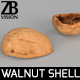 Walnut - 3DOcean Item for Sale