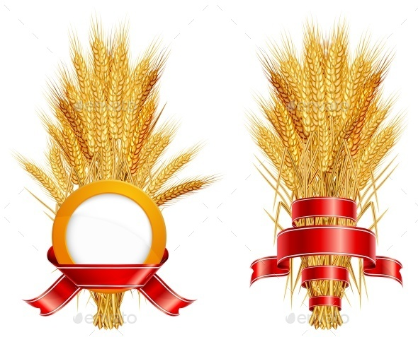 Ears of Wheat  - Miscellaneous Vectors