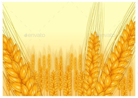 Ripe Ear Wheat  - Food Objects