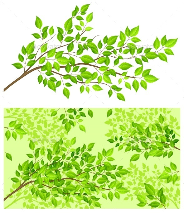 Branch Tree with Green Leaf  - Food Objects