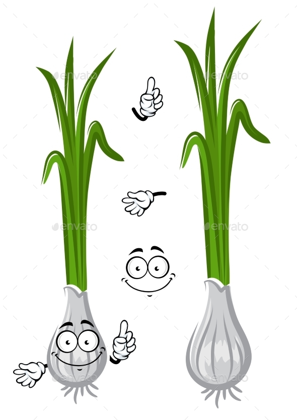 Cartoon Healthful Green Onion Vegetable - Food Objects