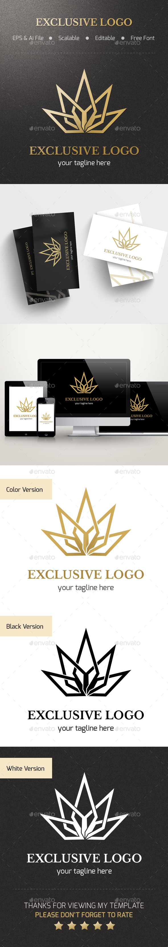 Exclusive Logo - Abstract Logo Templates