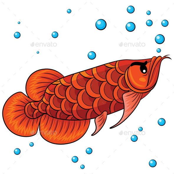 Arowana Fish Cartoon - Animals Characters