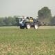 Spray Machine Sprays Over Growing Cornfield - VideoHive Item for Sale