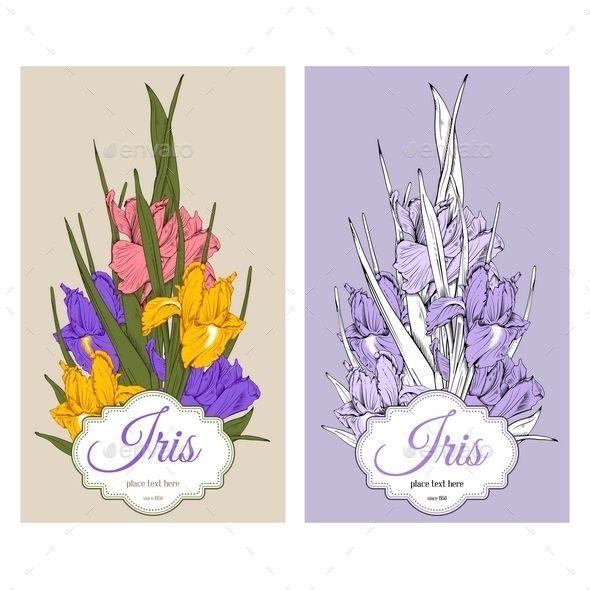 Iris Flowers - Backgrounds Decorative