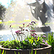 Fountain In The Park - VideoHive Item for Sale