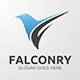 Falconry Logo  - GraphicRiver Item for Sale