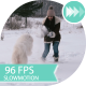 Young Girl Playing With a Dog In Winter Park - VideoHive Item for Sale