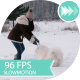 Young Girl Trains The Dog In The Winter Woods - VideoHive Item for Sale
