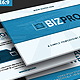 BIZPro Proposal PPT Presentation - GraphicRiver Item for Sale