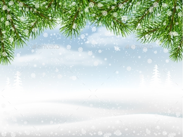 Winter Background With Pine Branches - Seasons Nature