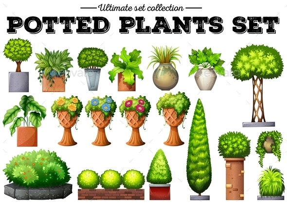 Potted Plants in the Garden - Organic Objects Objects