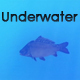Underwater Background - VideoHive Item for Sale