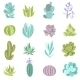 Download Vector Cactus Icons Set
