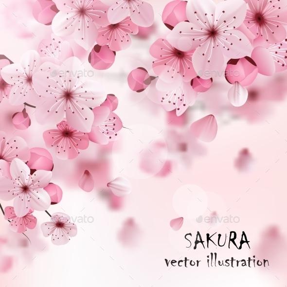 Pink Cherry Sakura Print - Flowers & Plants Nature