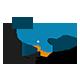Cartoon Bird Opener 4K - VideoHive Item for Sale