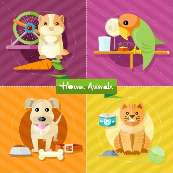 Hamster, Parrot, Cat and Dog - Animals Characters