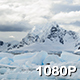Icebergs Wash Away in Antarctica - VideoHive Item for Sale