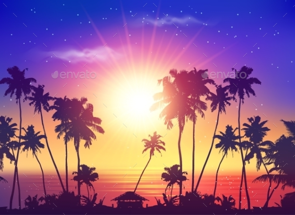Ocean Sunset Sky with Dark Palm Silhouettes - Landscapes Nature