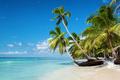 Caribbean beach in Saona island, Dominican Republic - PhotoDune Item for Sale
